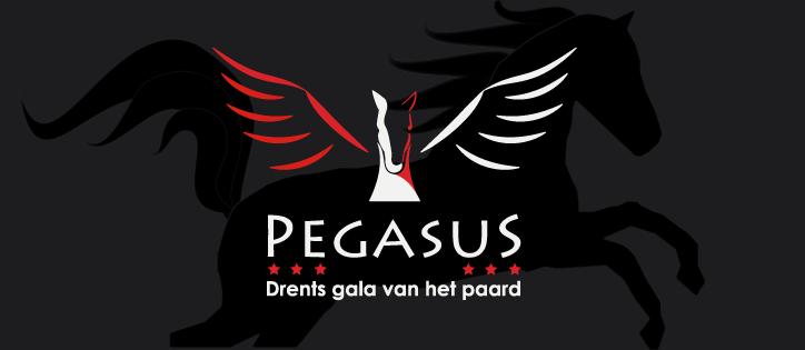 Pegasus, het Drents gala van het paard komt naar Exloo!