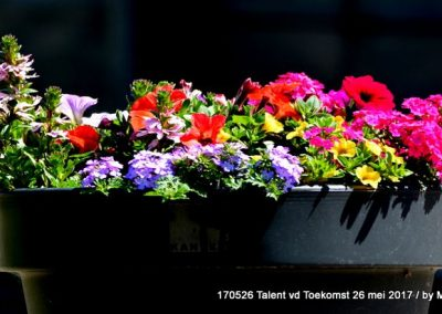 170526_HCE_TalentvdT (259)