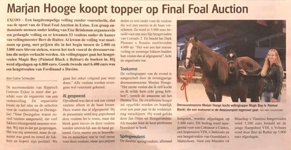 Veulenveiling Final Foal Auction