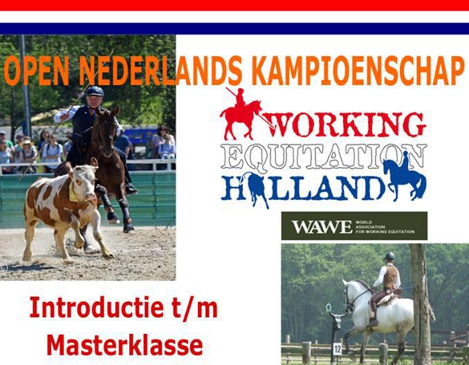 NEDERLANDS KAMPIOENSCHAP WORKING EQUITATION 10-12 november 2017