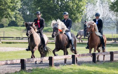 PRIJZENREGEN en uitmuntende prestaties topruiters Noord-Nederland tijdens IJRN Internationaal 2018 in Exloo!