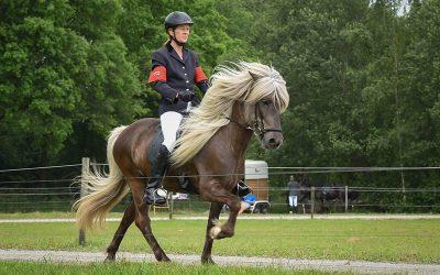 Top (dubbel)succes voor Marion Duintjer,  Rena Holthaus- Bosma en Inge Frieling