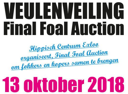Veulenveiling 13 oktober