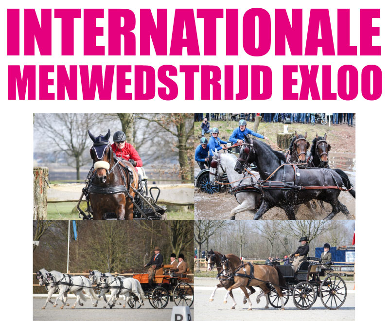 Internationale Menwedstrijd Exloo