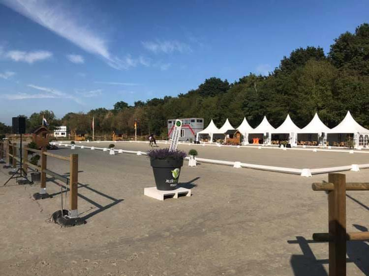 HCE DRESSAGE EXPERIENCE